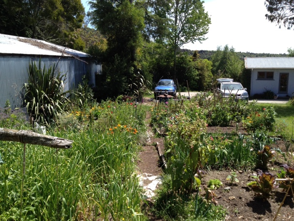 Looking over the vege garden at the main house and carpark - the only downfall is that cars are a necessity around these remote areas. However carpooling is alive and well!